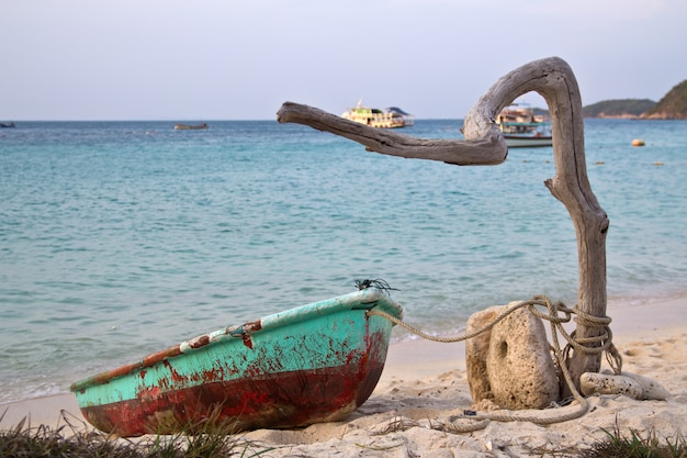 Old boat is tied to a tree branch by the sea Premium Photo