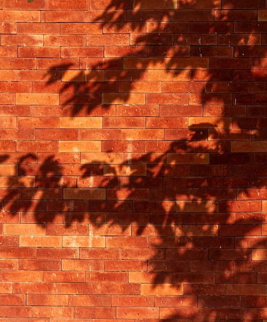 Старая кирпичная стена с тенями листьев Бесплатные Фотографии