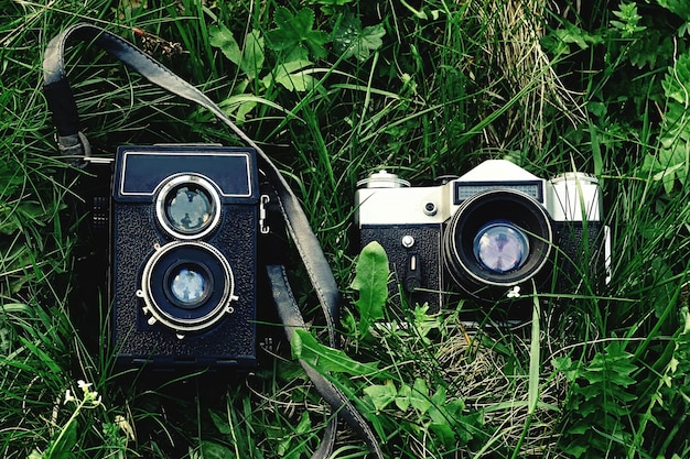Old cameras on the grass Premium Photo
