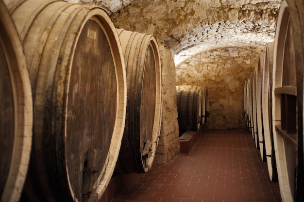 Old cellar of the winery with barrels of wine. Premium Photo