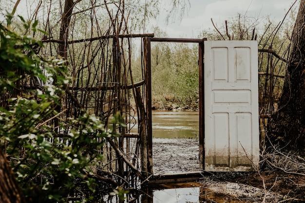 川の近くの森の古い玄関ドア Premium写真