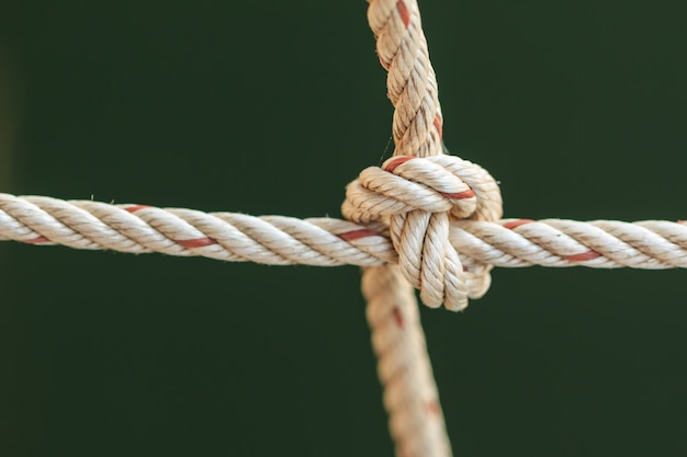 Old fishing boat rope with a tied knot Premium Photo