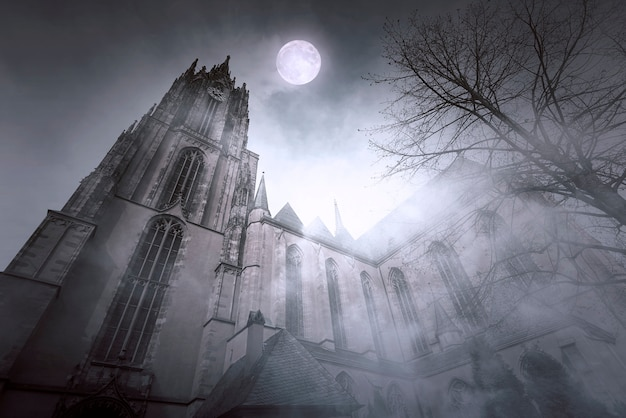 Old gothic church with moonlight and foggy night in frankfurt in germany Premium Photo