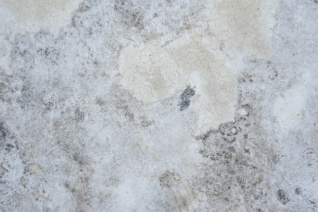 Old grunge abstract background texture white concrete wall Premium Photo