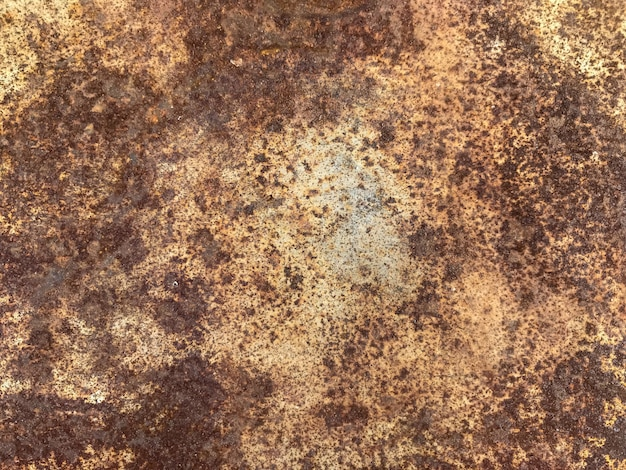 Old grunge metal sheet texture for any design wall background. Premium Photo