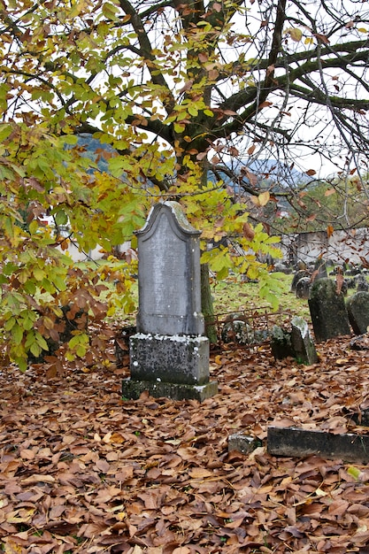 Old jewish cemetery Premium Photo