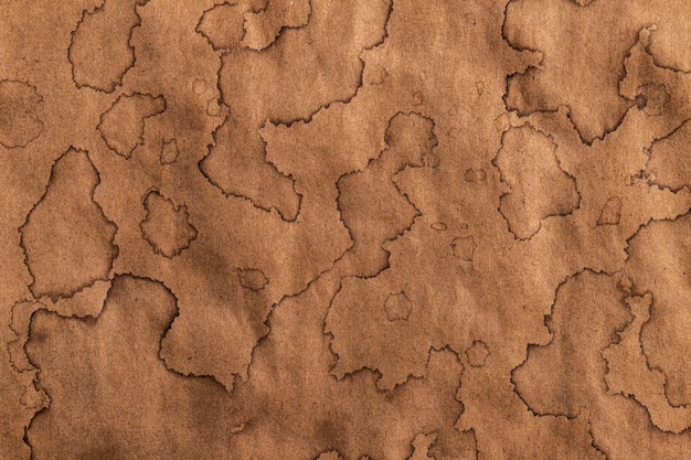 Old kraft texture, antique paper background with brown coffee stains Premium Photo