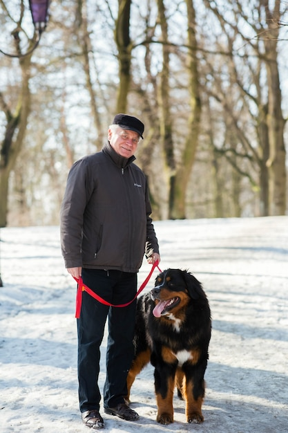 Old man stands with bernese mountain dog on the snow in park Free Photo