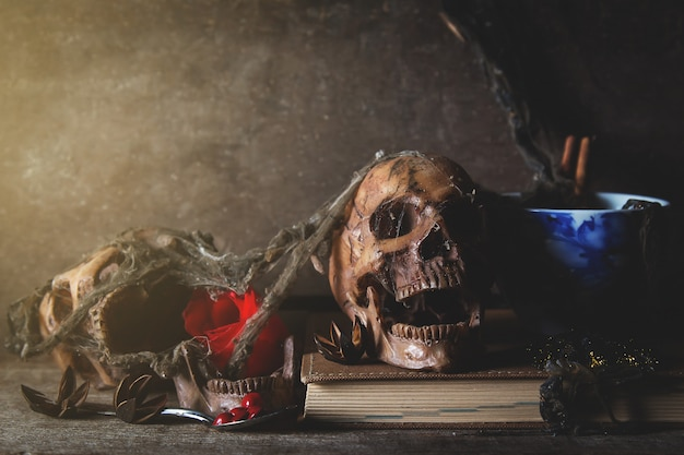 Old skull death in dark room, still life photography Premium Photo