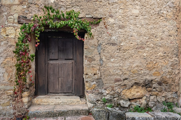 Old small door in the historical village of pedraza. Premium Photo
