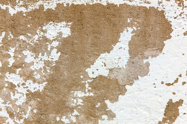 Old surface of cement background Premium Photo