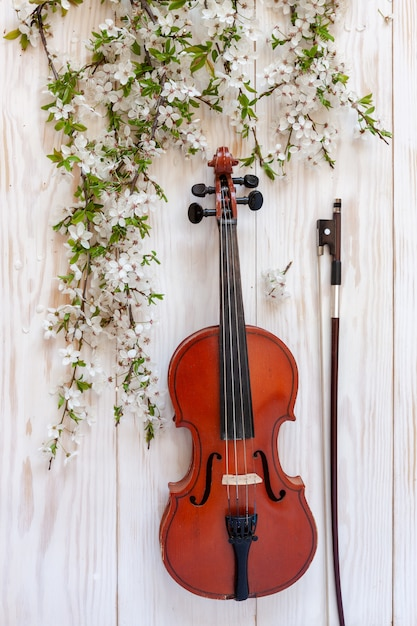 Old violin with fiddlestick and blossoming cherry tree