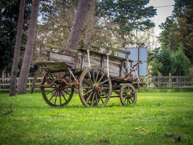 Старый выветрившийся экипаж в саду в дневное время Бесплатные Фотографии