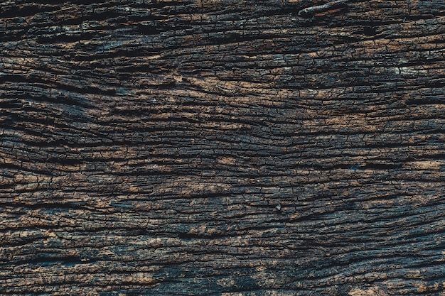 Old wood, real nature high detail of dark wooden panel texture pattern for background Premium Photo