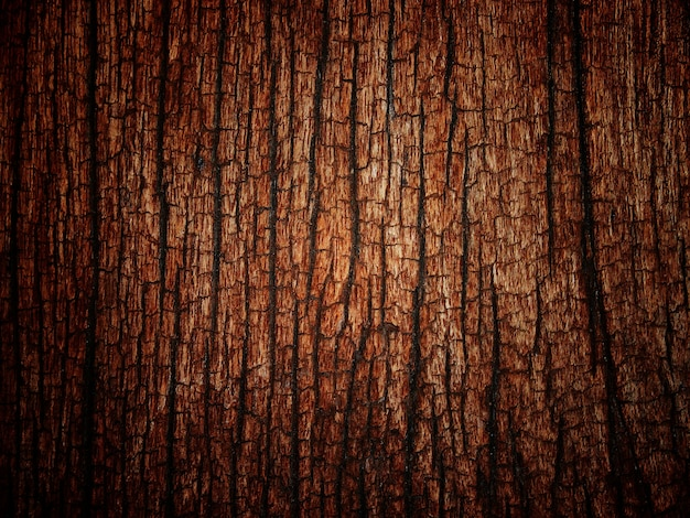 Old wood texture for halloween background. Premium Photo