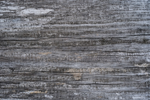 Old wood texture of wood wall for background and texture. Free Photo