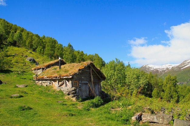 Old wooden house with grass roof in norway Premium Photo