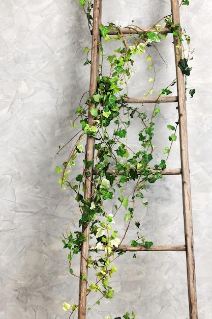 Old Wooden Ladder Premium Photo