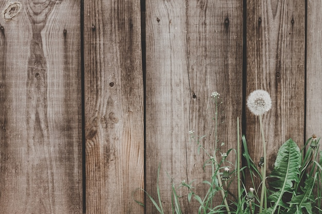 Old wooden planks texture background. wooden fence from boards vintage background. Premium Photo