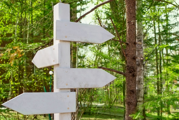 Old wooden signpost in the park. Premium Photo