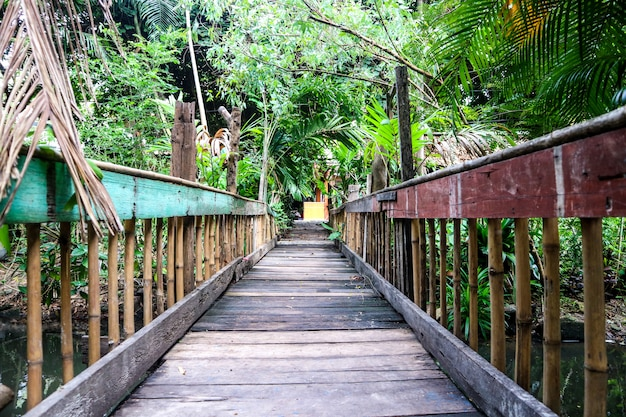 Old wooden suspension bridge used to cross the stream. the trees plants are full Premium Photo