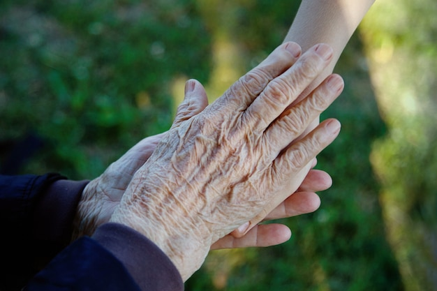 Old and young holding hands. family love concept. Premium Photo