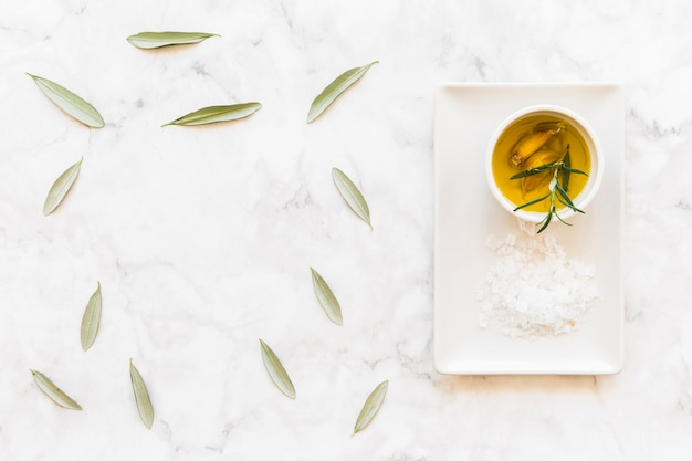 Olive leaves with garlic clove and rosemary herb oil and slat on the tray Free Photo