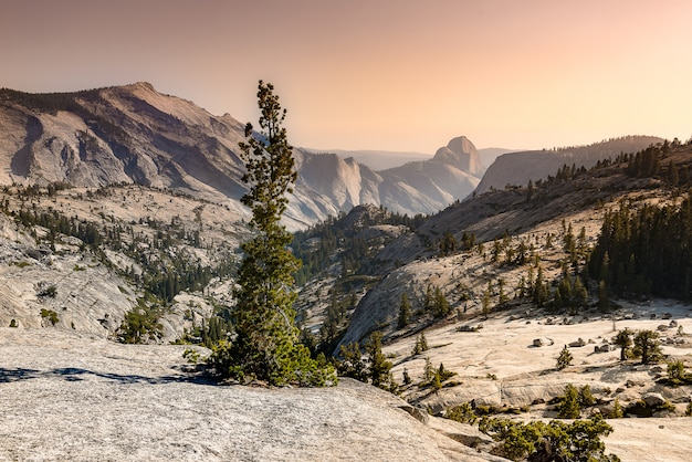Olmsted point yosemite Premium Photo