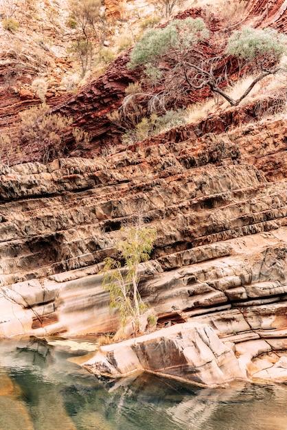 Один из самых впечатляющих пейзажей австралии расположен в кариджини, западная австралия. Premium Фотографии