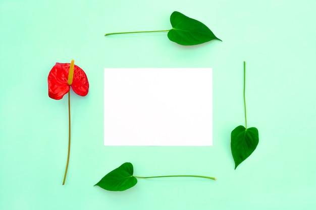 1つの赤い花と葉が白紙のフレームを形成します。 Premium写真