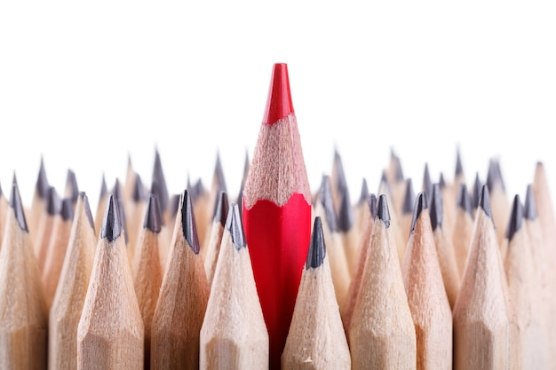 One sharpened red pencil among many ones Premium Photo