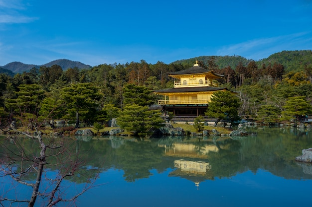 One temple in kyoto, which is the main tourist attraction of the city. Premium Photo