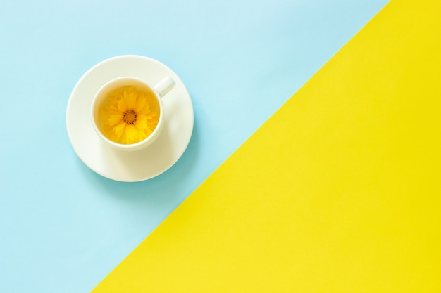One yellow coreopsis flower in cup on yellow and blue paper background Premium Photo