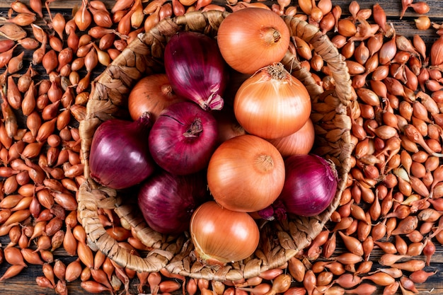 Onions in a basket with red onions top view on a shallots Free Photo