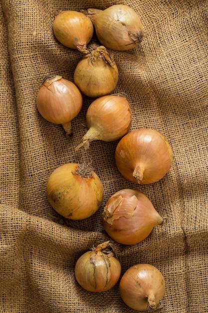 Onions on blanket Free Photo