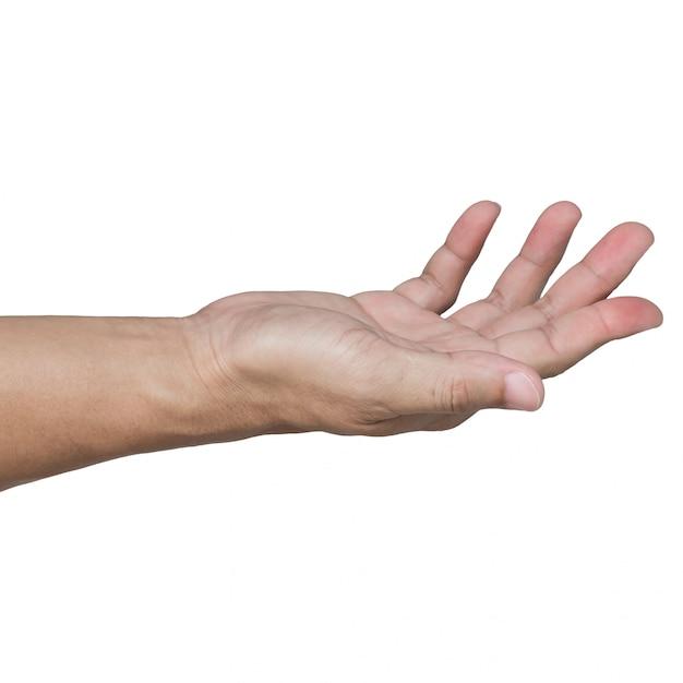 Open hand isolated on white Premium Photo