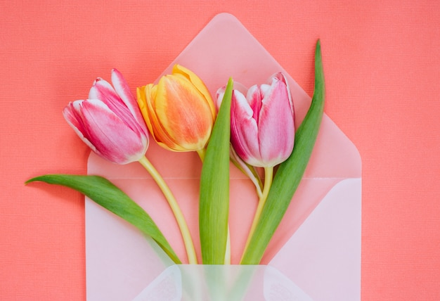 Open matte transparent envelope with multicolored tulips on living coral background Premium Photo