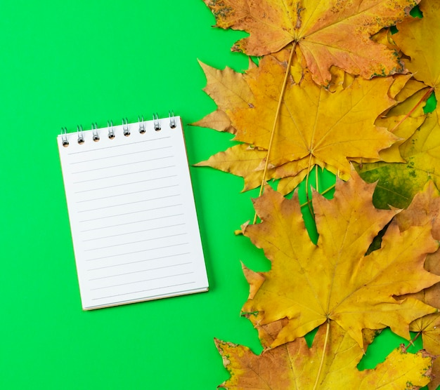 Open notebook in line with white blank pages Premium Photo