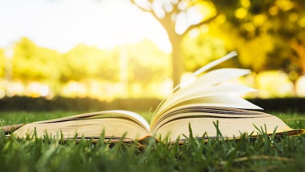 Открытая книга на траве при солнечном свете Premium Фотографии