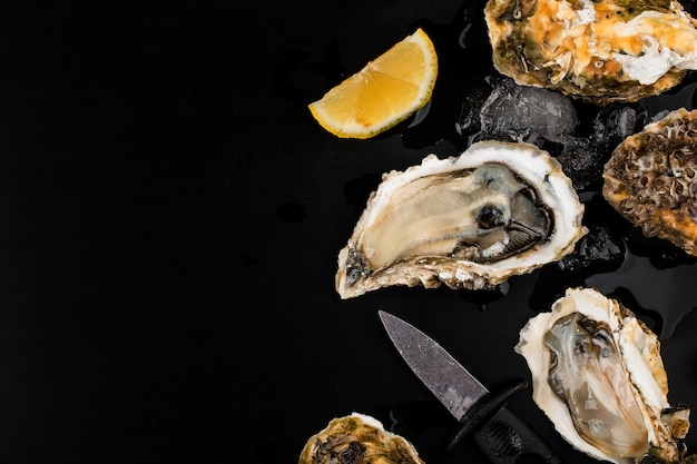 Opened oysters, ice and lemon on a black surface Free Photo