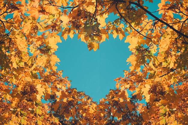 심장 모양의 주황색과 노란 잎 프리미엄 사진