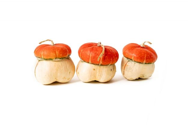 Orange pumpkins. fall autumn concept. Premium Photo