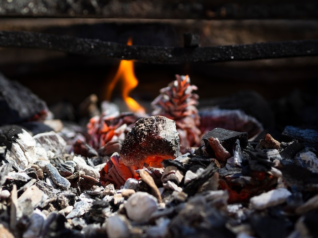 Orange smoldering coals and low flame in barbecue Free Photo