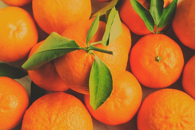 Oranges Free Photo