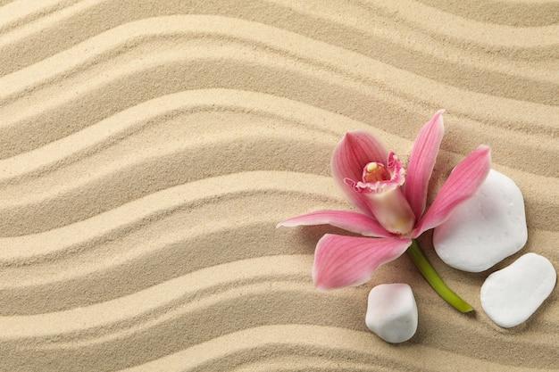 蘭と砂の背景、上面に石。禅のコンセプト Premium写真