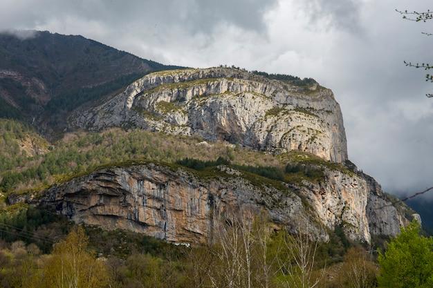 Национальный парк ордеса весной. Premium Фотографии