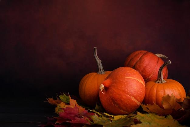 Органические оранжевые тыквы над осенними листьями на темном фоне. осенние тыквы с копией пространства. Premium Фотографии