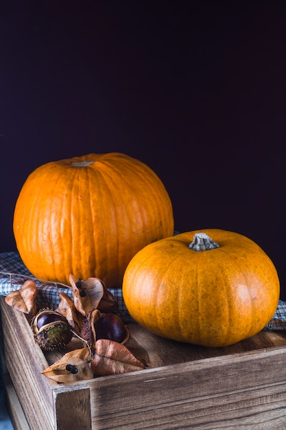 Organic pumpkin and chestnut on wooden table with black backdrop Free Photo