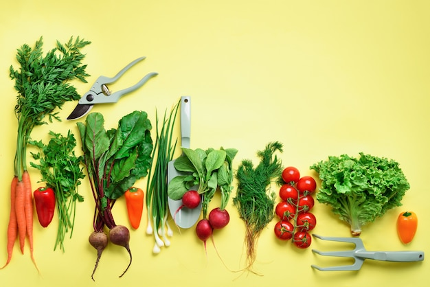 Organic Vegetables And Garden Tools On Yellow Background With Copy