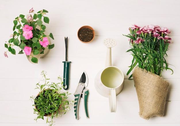 Organized composition of gardening design Free Photo